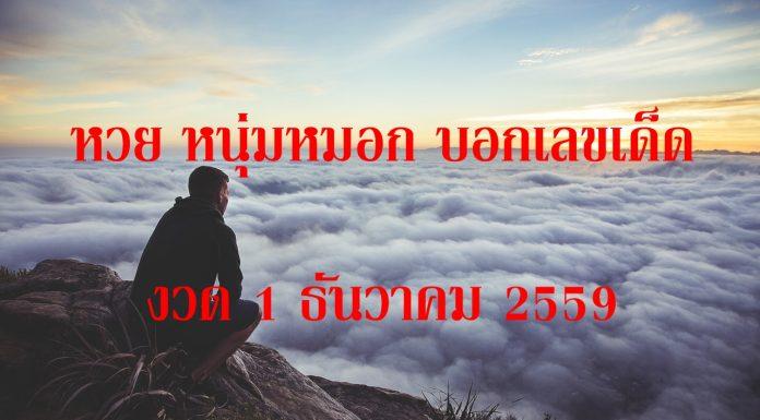 หวยหนุ่มหมอก บอกเลขเด็ด งวด 1 ธันวาคม 2559