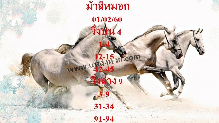 หวยเด็ด ม้าสีหมอก ประจำงวด วันที่ 1 กุมภาพันธ์ 2560